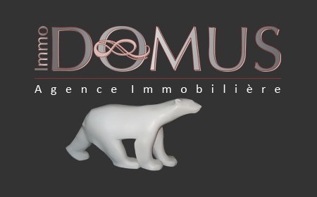 Agence DOMUS chasseur immobilier : ImmoDOMUS